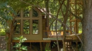 River Road Treehouses Near The Guadalupe River In Texas Let You Glamp In Style