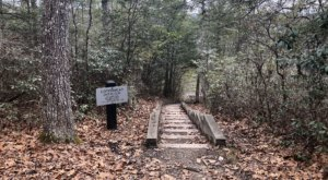 Hike This Stairway To Nowhere In West Virginia For A Magical Woodland Adventure