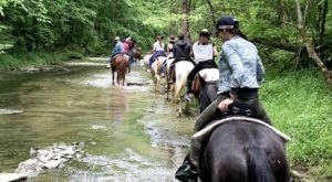 Cross Horseback Riding Off Your Bucket List With A Trail Ride At Deer Run Stable In Kentucky