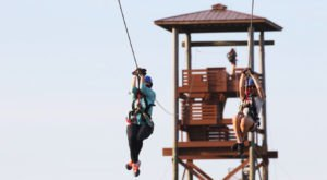 Try The Highest, Longest, And Fastest Zipline On The Gulf Coast At Alabama's Hummingbird Zipline Course
