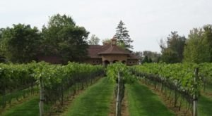 Experience A Touch Of Italy At Gervasi Vineyard In Ohio