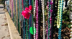 10 Things Every New Orleanian Has Done During Mardi Gras