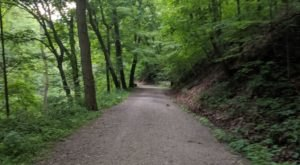 Hike This Stairway To Nowhere Near Pittsburgh For A Magical Woodland Adventure
