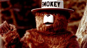 Few People Know That New Mexico Is The Birthplace Of Smokey Bear, The Wildfire Prevention Symbol