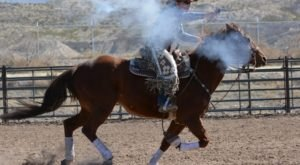 Grab Your Favorite Buckaroos And Mosey On Over To The Cowboy Days Festival In Las Cruces, New Mexico