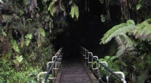 Hawaii Volcanoes National Park's Thurston Lava Tube Just Reopened And We Can't Wait To Visit