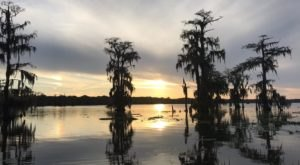 You May Never Want To Leave The Serenity Of Lake Martin In Louisiana