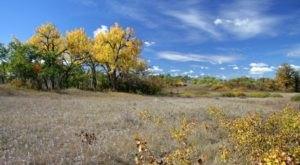 Explore 58,700 Acres At The Largest Wildlife Refuge In North Dakota, The J. Clark Salyer NWR