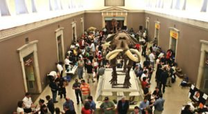 Enjoy Beer And Wine Tastings During The After-Hours Beerology Event At The Buffalo Museum Of Science