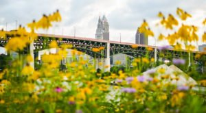 8 Places In Greater Cleveland That Are Reinvigorated With Life As Springtime Approaches