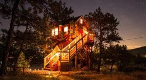 Sleep Among Towering Pines At The Little Red Treehouse In Colorado