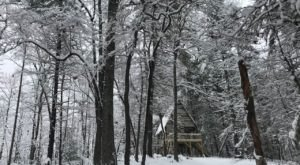 The Winter Treehouse Escape In Georgia Is A Charming Seasonal Getaway