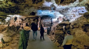 One Of The Oldest National Parks In The U.S., Wind Cave In South Dakota Has Been Open Since 1903