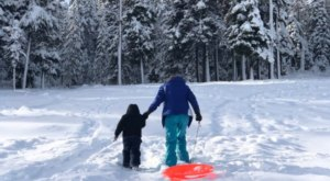 Slide, Sled, And Play In The Snow All Day At Wanoga Snow Play Area In Oregon