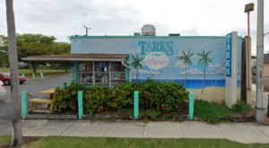 The Top Spot To Snag Some Serious Chicken Wings In Florida Is At Tarks Of Dania Beach