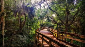 Challenger Seven Park Loop Is A Boardwalk Hike In Texas That Leads To Incredibly Scenic Views