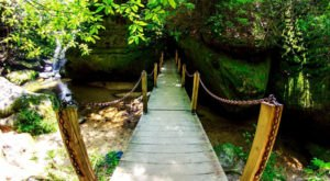 Take An Easy Out-And-Back Trail To Enter Another World At Dismals Canyon In Alabama