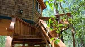 Sleep High Up In The Forest Canopy At Gallatin River Hideaway In Montana