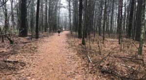 Jerimoth Hill Is The Greatest Mountain Hiking Trail In Rhode Island For Beginners