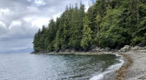 Traipse Through A Rainforest To Get To A Secluded Beach In Alaska On The Coast Guard Beach Trail