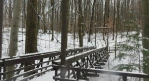 Locals Hike Year-Round At F.A. Seiberling Nature Realm, A Beautiful Metro Park in Ohio