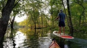 Paddling Georgia's Most Scenic Waterways Will Be The Highlight Of Your Summer