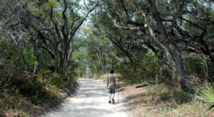 8 Easy And Beautiful Spring Hikes Everyone In Alabama Will Love