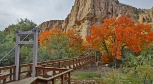 Take A Suspension Bridge Hike Through Boyce Thompson Arboretum, A 392-Acre Botanical Garden In Arizona