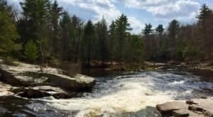 Be In Awe Of The Natural Beauty Found On This Short, Secluded Hike In Pennsylvania's Blakeslee Natural Area