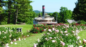 Walk Through A Sea Of  Lilacs and Peonies At The Shelburne Museum and Gardens In Vermont
