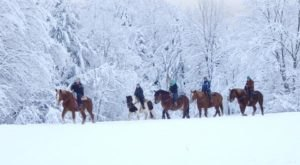 Go On A Breathtakingly Beautiful Horseback Riding Tour In Lajoie Stables In Vermont