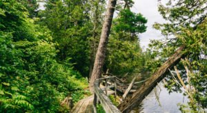 The Tell Lake Boardwalk Hike In Minnesota Leads To Incredibly Scenic Views