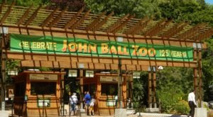 Take A Thrilling Flight On The John Ball Zoo Zipline In Michigan