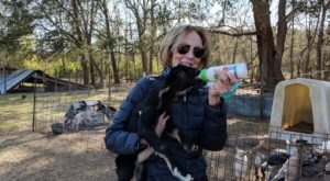 You Can Bottle Feed A Baby Goat At The Goatery, An Adorable Goat Farm On An Island In South Carolina
