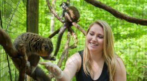 Play With Sloths and Kangaroos At Oglebay Good Zoo In West Virginia For An Adorable Adventure