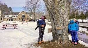Spend Your March Sundays Maple Sugaring At The Farmers' Museum In New York