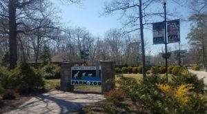 Admission-Free, The Cape May Zoo In New Jersey Is The Perfect Day Trip Destination
