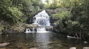 This One-Mile Hike In Pennsylvania Ends At Hawk Falls, A Waterfall You Need To See With Your Own Eyes