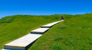Poverty Point's Hiking Trail Will Take You Through The Oldest Attraction In Louisiana