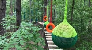 With Rental Cabins And A Treetop Walk, Explore Park In Virginia Will Bring Out Your Inner Adventurer
