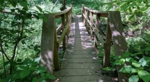 Take An Easy Loop Trail To Enter Another World At Mineral Springs Trail In Pennsylvania