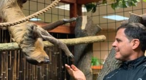 Hold And Feed A Sloth In New York At The Wild Animal Park's Newest Sloth Encounters Exhibit