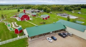 Cruise Down A Three-Story Slide, Step Inside A Walk-In Birdhouse, And More At Amaze'n Farmyard In Minnesota