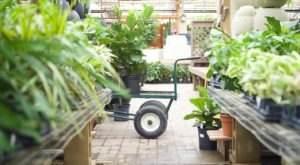 Plant Lovers Won't Be Able To Resist The Gardening Paradise At Tonkadale Greenhouse In Minnesota