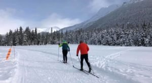 Take Your Spring Cross Country Skiing To Moose Meadows In Alaska