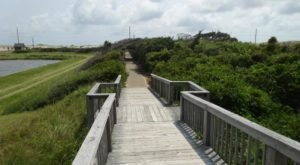 The North Pond Trail Is A Boardwalk Hike In North Carolina That Leads To A Secret Scenic View