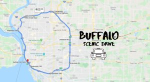 The 37-Mile Scenic Drive Around Buffalo You Will Want To Take As Soon As You Can