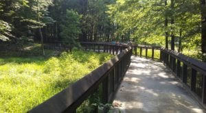 8 Most Beautiful Short And Sweet Hikes In The Cleveland Metroparks