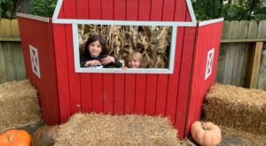 Kids Love Matthys Farm Market, A Year Round Family-Friendly Countryside Destination In Indiana