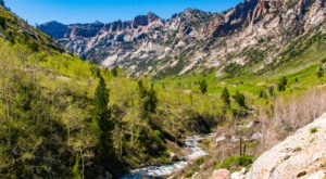 8 Breathtaking Photos That Prove Spring In Nevada Is The Most Beautiful Time Of Year